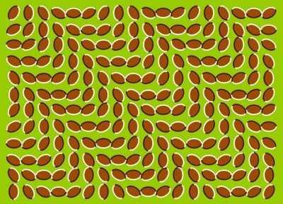 загадки иллюзии