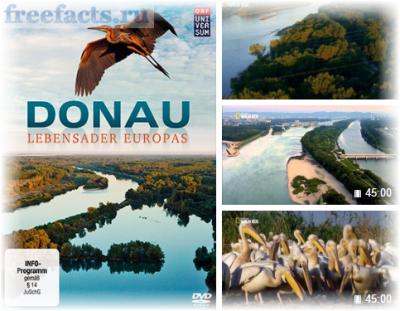 Дунай - Европейская Амазонка