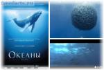 Смотреть научно-познавательные фильмы: роль в обучении школьника
