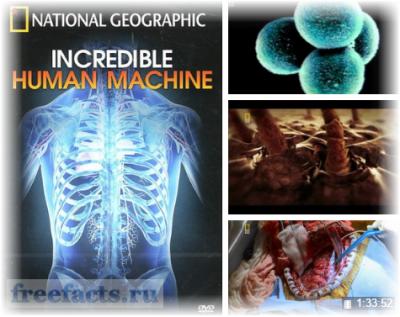 Смотреть научно-познавательные фильмы